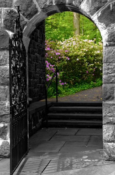 Garden Entryway Nature Photo Wall Art by Nature Photographer Melissa Fague
