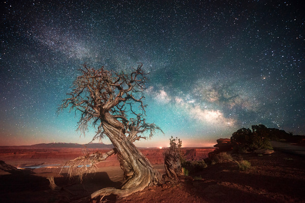 Stars at Dead Horse Point