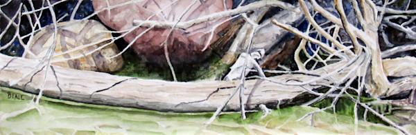 wyoming watercolors