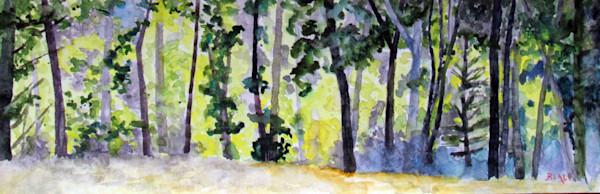 Cottonwoods Along Brush Creek