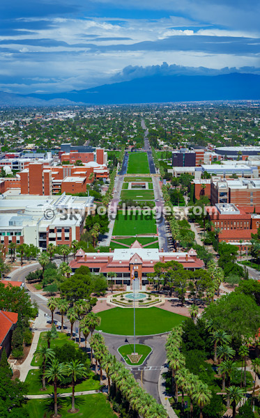 University of Arizona Mall  - uamall01