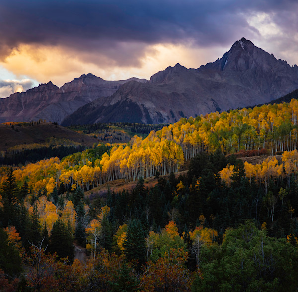 Mt Sneffels Autumn
