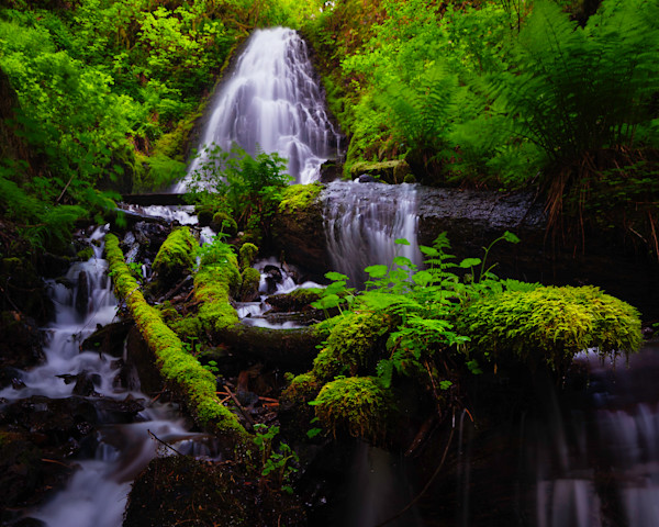 Below Fairy Falls