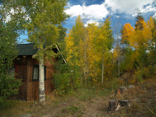 Cabin Among the Aspen