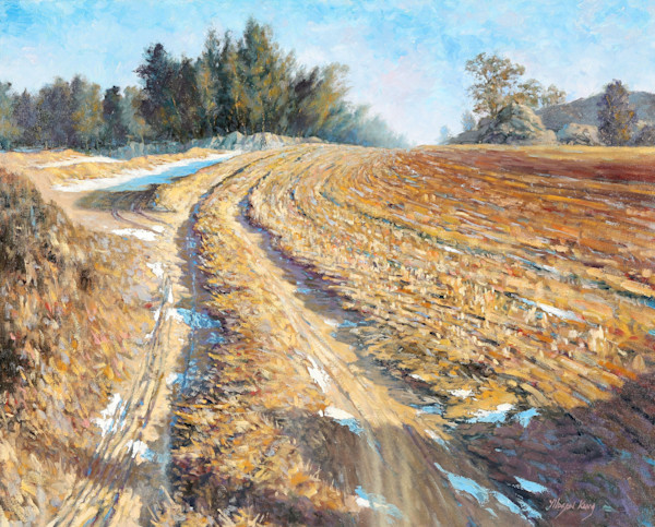 Country Field in Winter