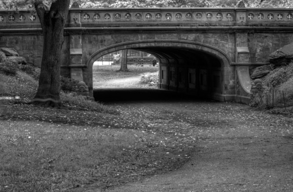 Fine Art Black and White Photograph of Central Park Bridge by Michael Pucciarelli