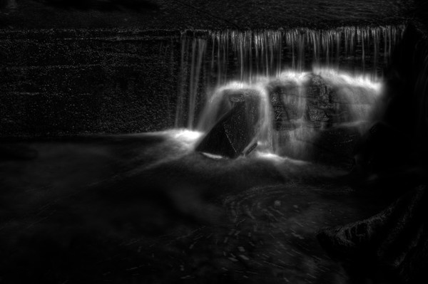 Black and White Fine Art Photographs of Rock Creek Park by Michael Pucciarelli