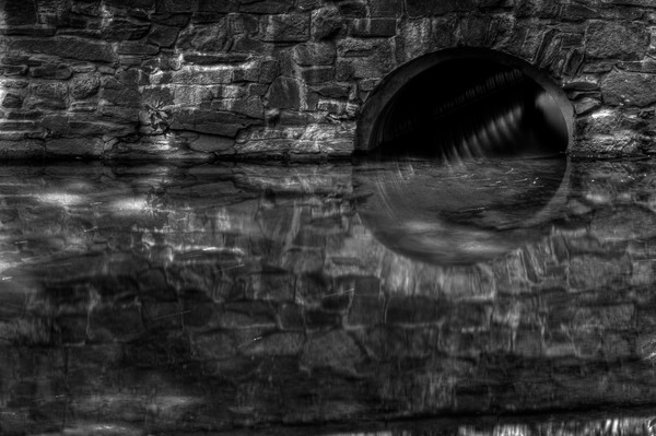 A Fine Art Black And White Photograph of Rock Creek Reflections in Washington DC by Michael Pucciarelli