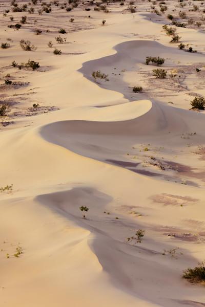 Ibex Serpentine Dunes