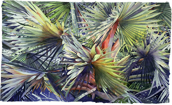A beautifully patterned, deeply textural and richly detailed cropped image of palm fronds fills the image area of this amazing watercolor by artist Marlies Merk Najaka.