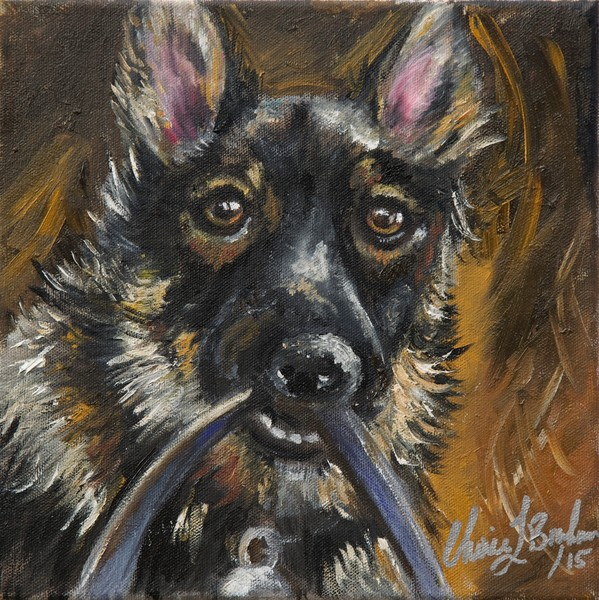 Cooper's Dog Portrait - Artistic View