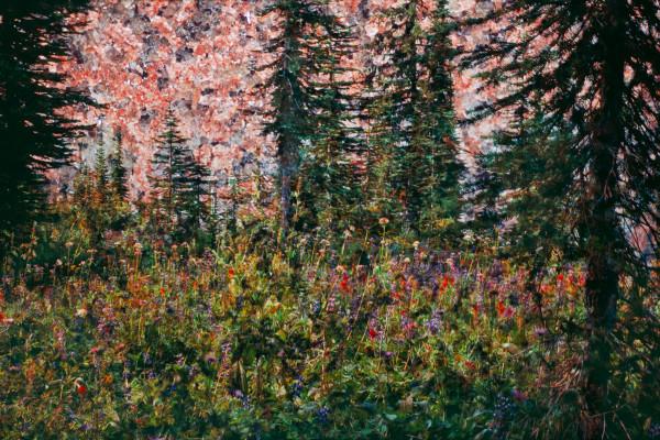 Idaho Peak 1