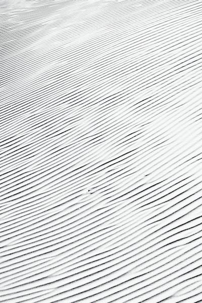 Sand Patterns III