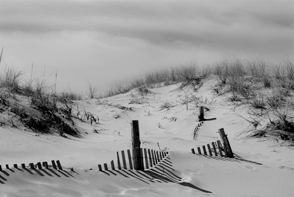 Buried Fences Limited Edition Signed Landscape Photograph by Melissa Fague