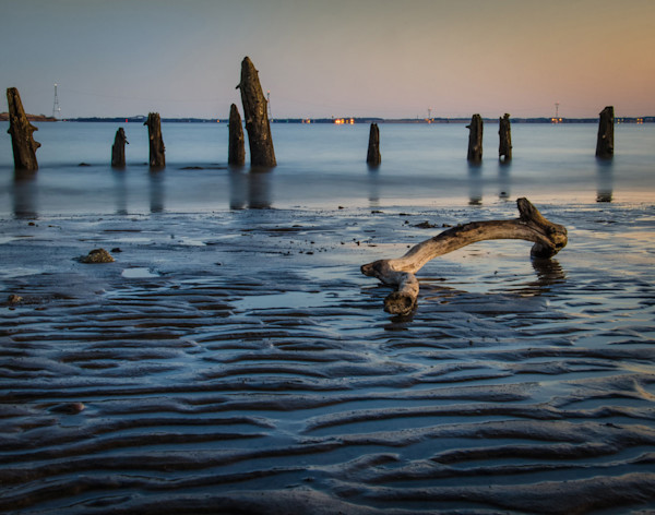 Driftwood and Sandbars Limited Edition Signed Landscape Photograph by Melissa Fague