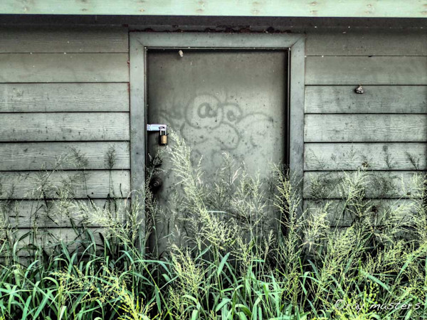 Grey Shed Door With Grafitti