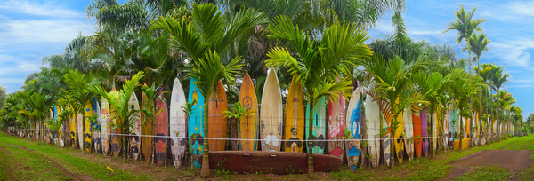 Photograph of Surfboard in Maui
