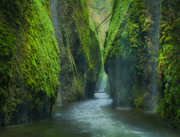 Oneonta Gorge Photograph Columbia River
