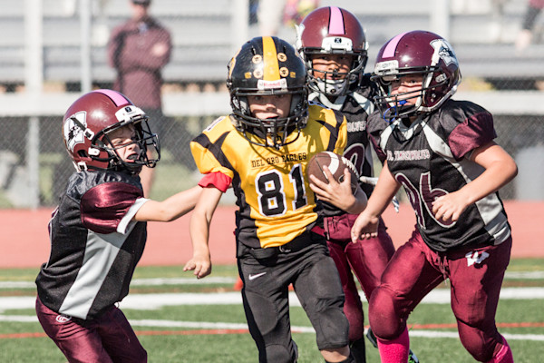 do vs woodcreek mighty mites