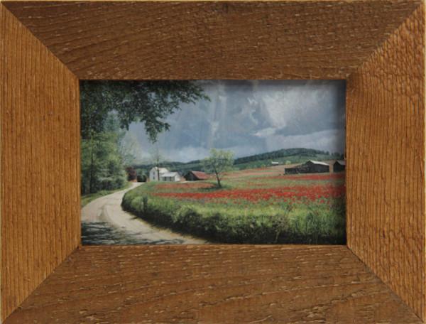 Thunder Mountain Poppies Micro Mini Print Framed For Sale