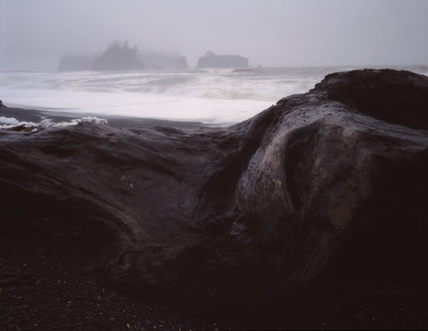 WInter storm on the rugged Washington coast