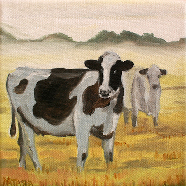 Cow 2 Art for Sale