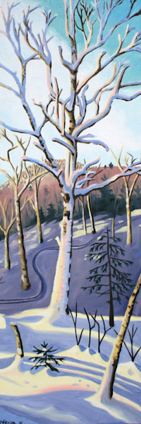 Catamount Trail I Art for Sale