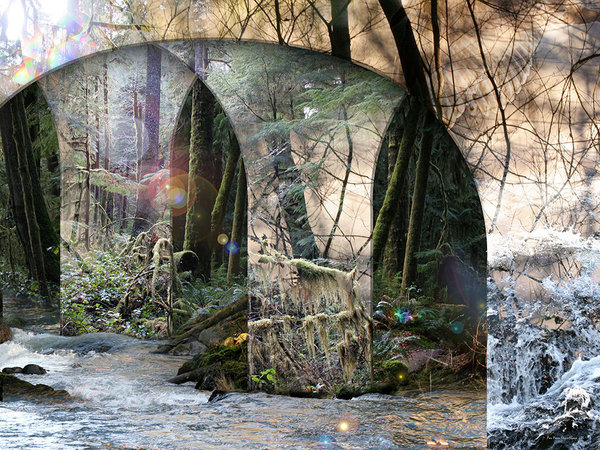 Surrounded by and joined with natural objects--trees, rocks and water and sheltered by heavenly wings, For Your Steps Alone, a digital collage by Leslie Kell is a feast for the eyes.