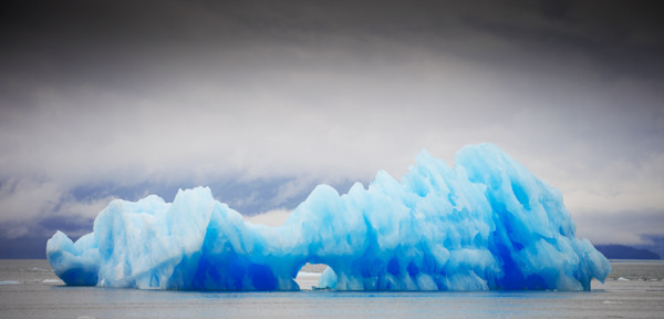 photograph of beautiful blue icebergs that have recently calved off the the massive LeConte Glacier in the heart of the Tongass National Forest in Southeast Alaska.  These icebergs can be larger than houses and are made of of ice that is thousands of
