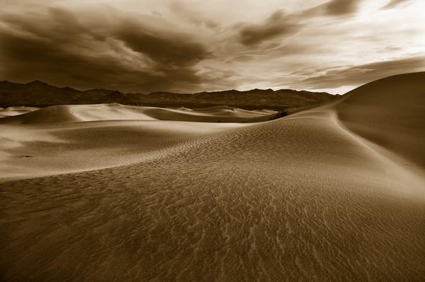 Death Valley Dunes - Fine Art Print - Alexander Rocco