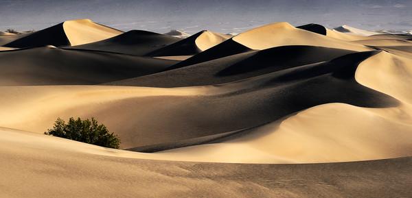 Death Valley Dunes Sun Rise - Fine Art Print