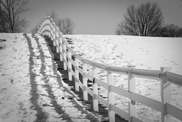 Endless Fences Limited Edition Signed Fine Art Landscape Photograph by Melissa Fague