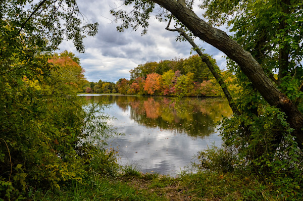 Lost in Autumn Color Limited Edition Signed Fine Art Landscape Photograph by Melissa Fague