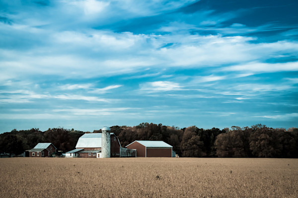 Red Barn in Golden Field Colorized Limited Edition Signed Fine Art Landscape Photograph by Melissa Fague
