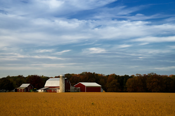 Red Barn in Golden Field Traditional Color Limited Edition Signed Fine Art Landscape Photograph by Melissa Fague