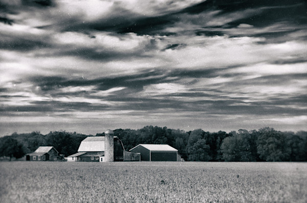 Red Barn in Golden Field Vintage Black and White Limited Edition Signed Fine Art Landscape Photograph by Melissa Fague