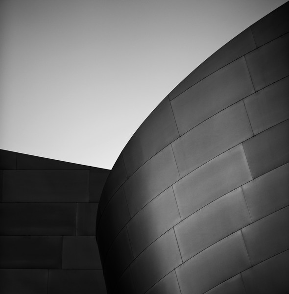 Architecture - Frank Gehry - Fine Art Prints