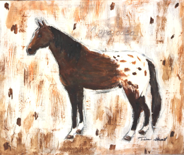 Appaloosa, Horse Painting, ,Fine Art and Paintings for Sale by Teena Stewart of Serendipitini Studio