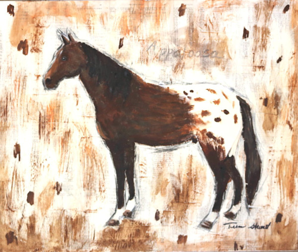 Appaloosa, Panting of an Appaloosa, Art for sale by Teena Stewart