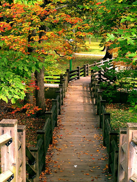 Footbridge in Autumn--Indiana