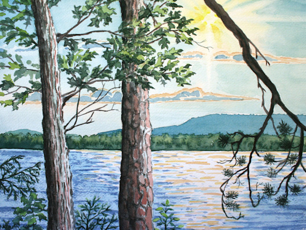 Oak and Scotch Pine Trees Art for Sale