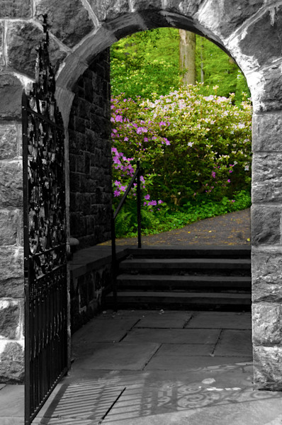 Garden Entryway Limited Edition Signed Fine Art Nature Photograph by Melissa Fague