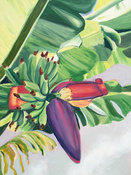 Banana Flower I Art for Sale