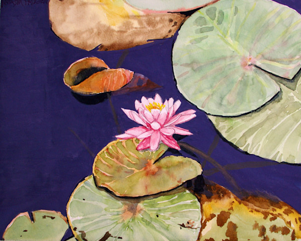 Blossom Water Lily Art for Sale