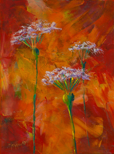 Queen Anne's Lace by Pat Megraw