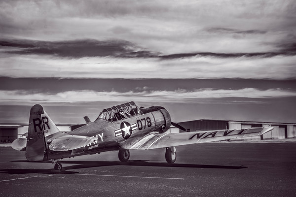 AT-6 Texan Trainer Monochrome|Wall Decor fleblanc