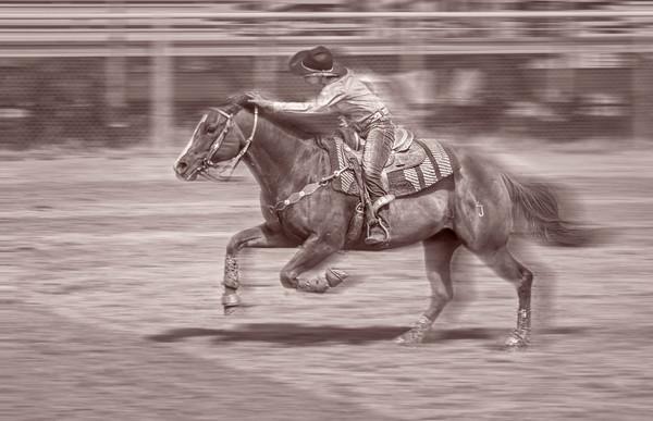 Rodeo Barrel Racing Horse Cowgirl Decor |Wall Decor fleblanc