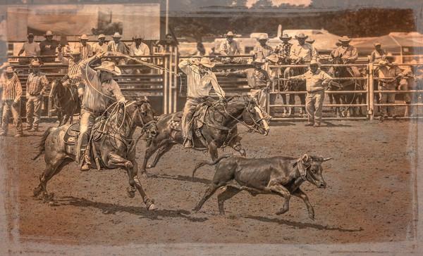Rodeo Team Calf Roping Cowboy Decor|Wall Decor fleblanc
