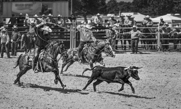 Rodeo Team Calf Roping Southwestern|Wall Decor fleblanc