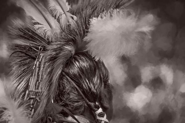 Native American Headdress Monochrome|Wall Decor fleblanc